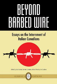 beyond_barbed_wire_book_2